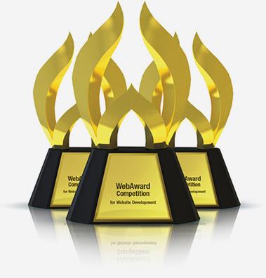 Web Development Award